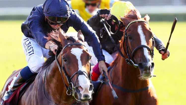 Caulfield Cup 2020 – Horses, Betting Tips & Odds