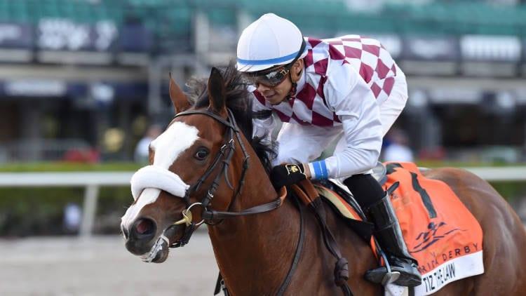 tiz the law racehorse